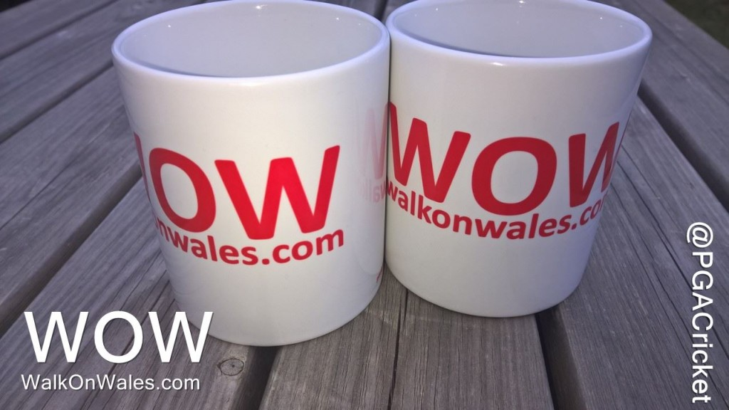 WOW Mugs - £5 each